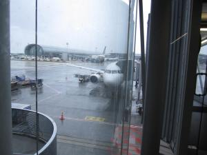 De nuevo el F-HEPA, A320 de Air France en CDG. Se alcanza a apreciar la arquitectura típica del aeropuerto